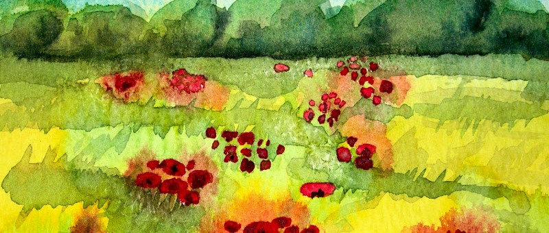 Grassy Meadow With Poppies