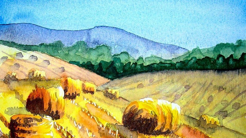 Watercolour Painting | Fields of Corn Harvested
