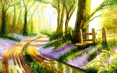 Watercolour Painting | Bluebell Wood
