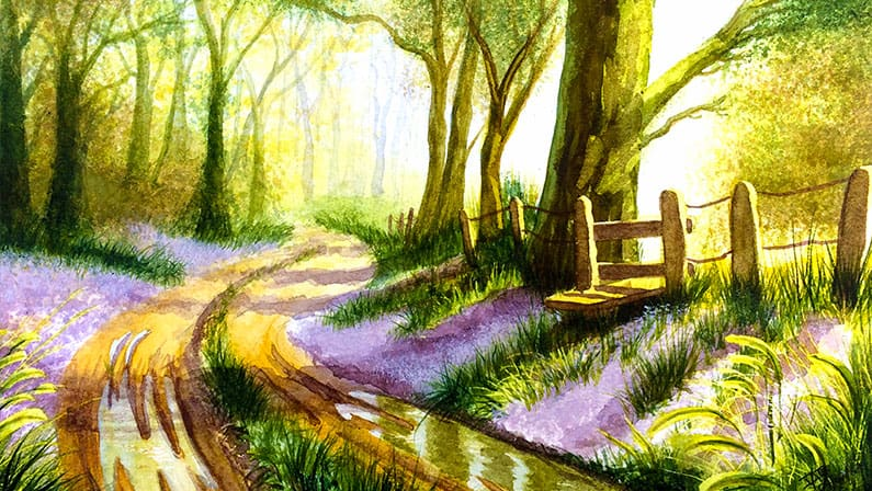Bluebell Wood - Original Watercolour Painting