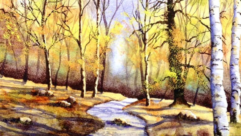 Original Watercolour Painting - Autumn Woodland