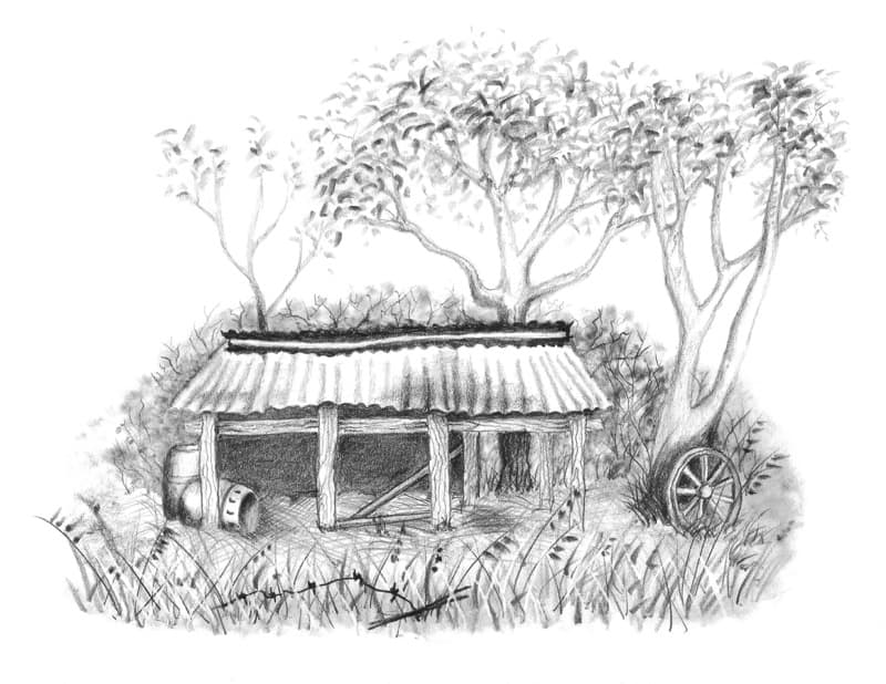 The Old Hay Shed a drawing from my drawing course