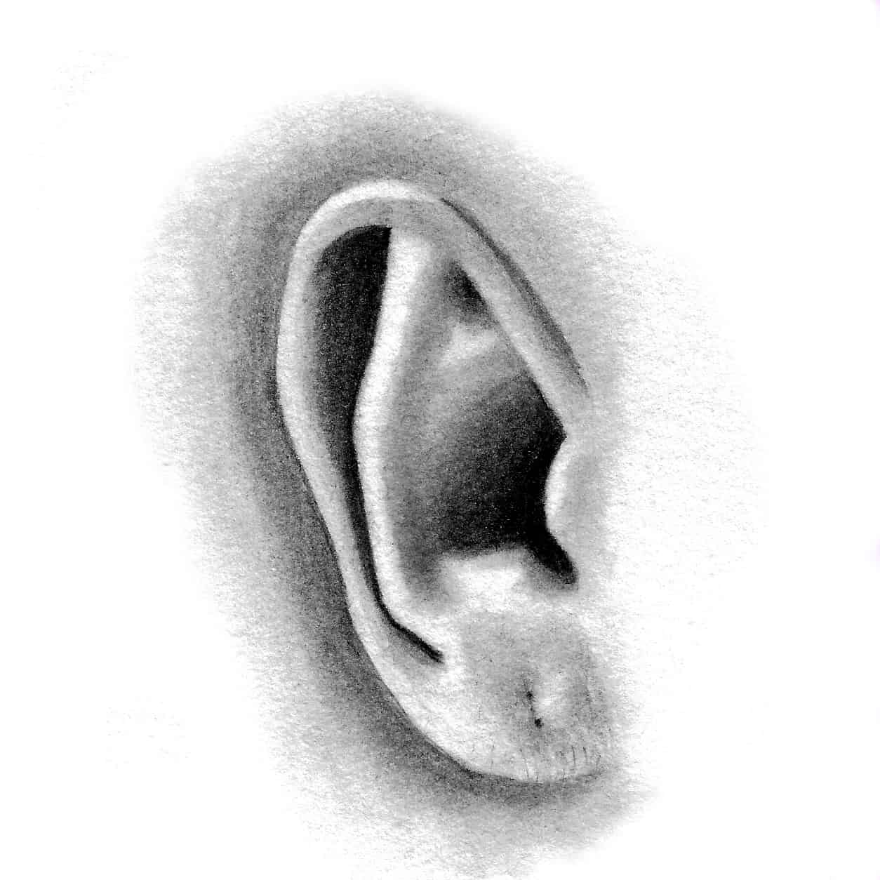 Portraiture foundations in pencil and charcoal watercolour how to draw a photorealistic ear ccuart Image collections